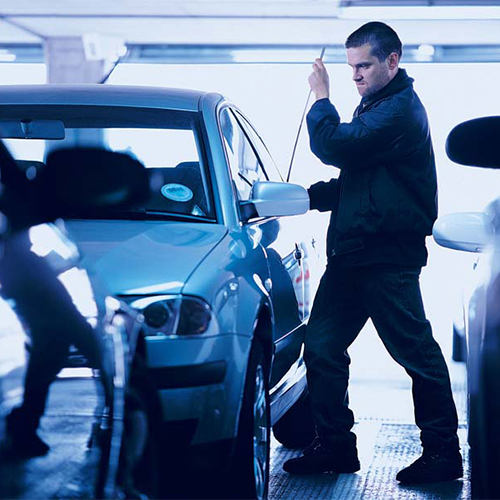 Platinum Security Anti-Theft Protection